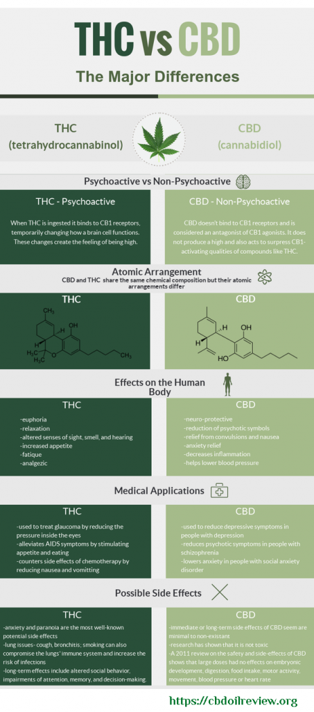 BEGINNERS GUIDE TO CANNABIDIOL OIL CBD 3